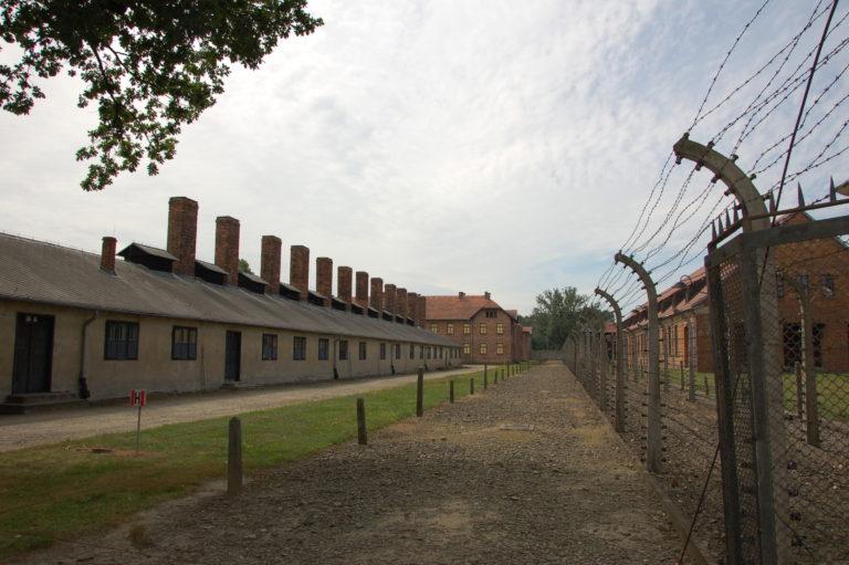 Gedenken der Opfer des Nationalsozialismus zum 70. Jahrestag der Befreiung des Vernichtungslagers Auschwitz
